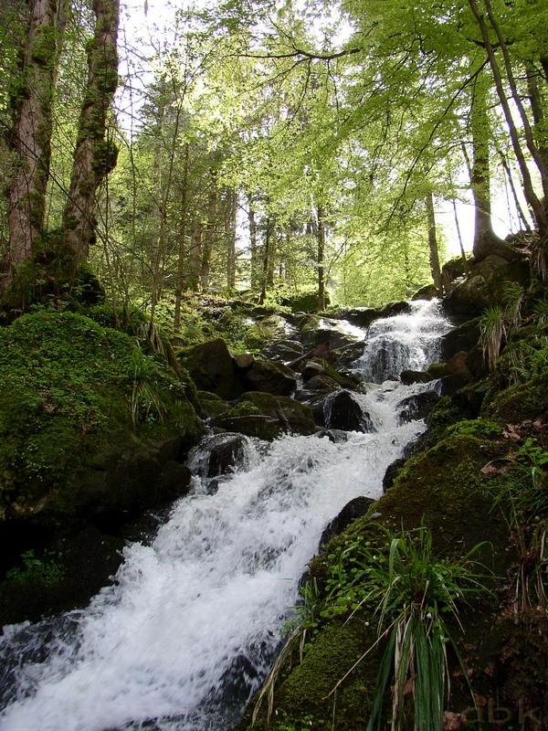 La Cascade de la Serva Cascad21