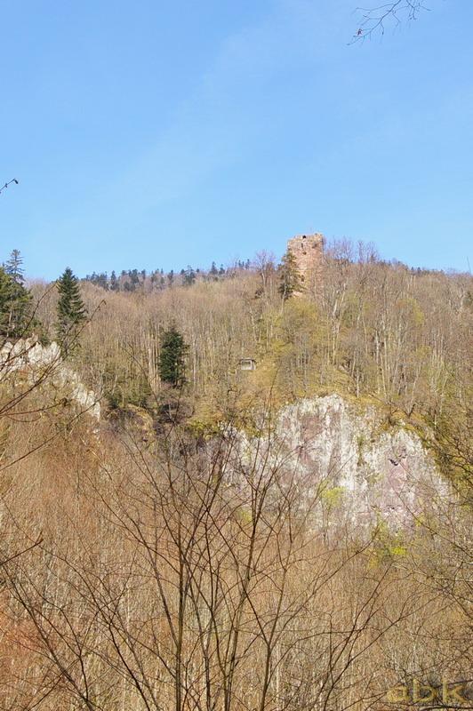 Le Château du Nideck Chatea11