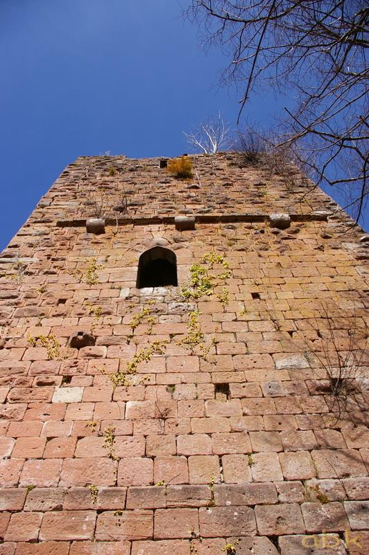 Le Château du Nideck Chatea13