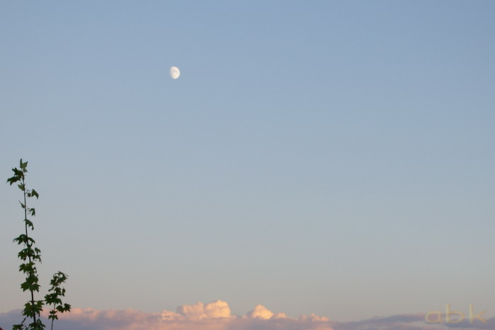 Lune Imgp2721