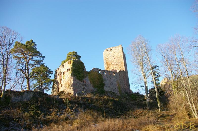 Le Château du Landsberg Imgp2814