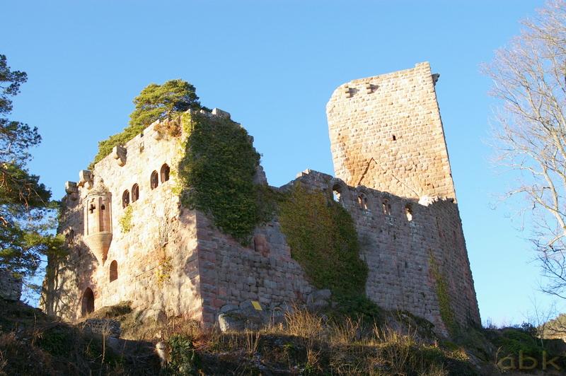 Le Château du Landsberg Imgp2815