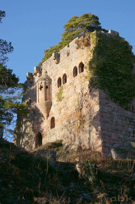 Le Château du Landsberg Imgp2816