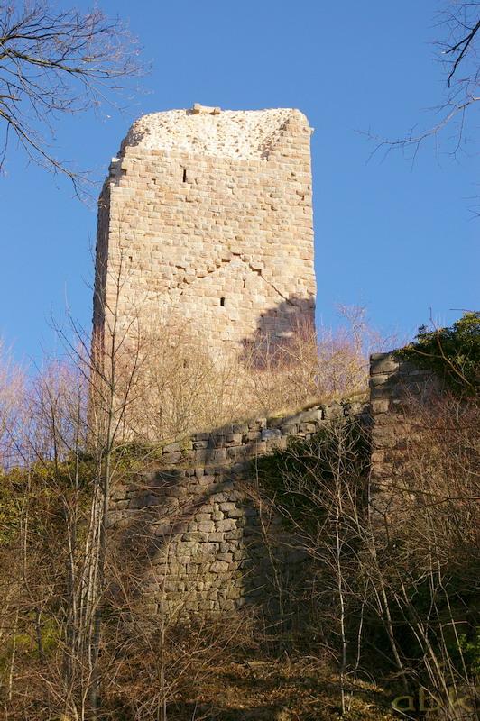 Le Château du Landsberg Imgp2817