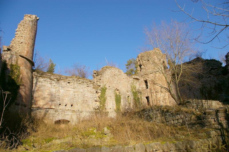 Le Château du Landsberg Imgp2818