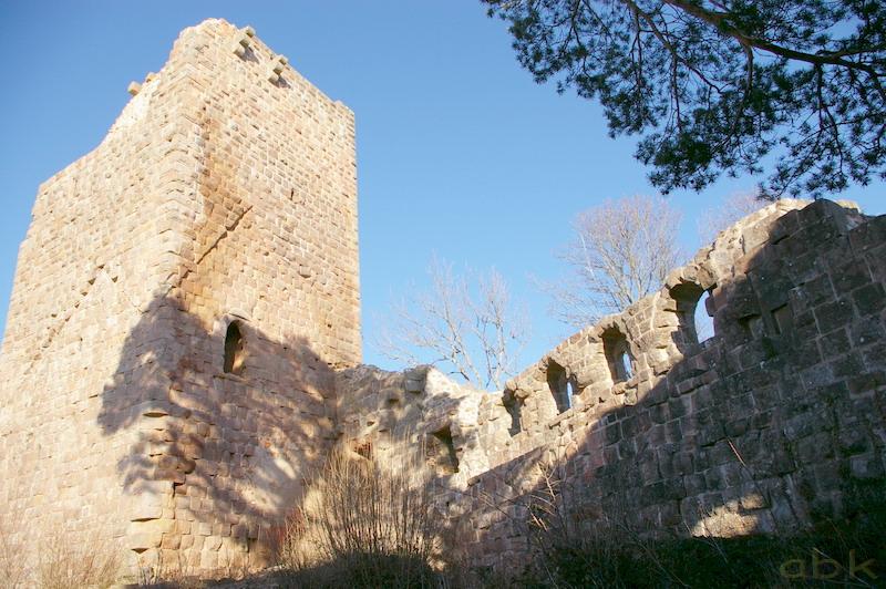 Le Château du Landsberg Imgp2823