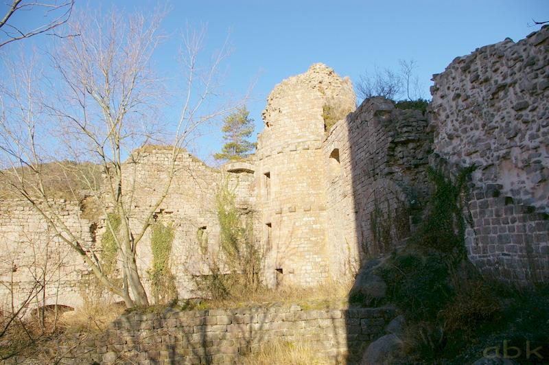 Le Château du Landsberg Imgp2825