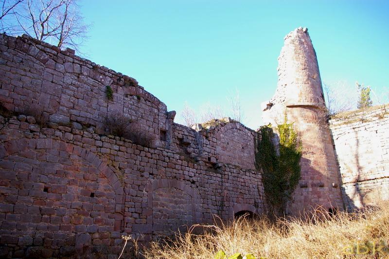 Le Château du Landsberg Imgp2826