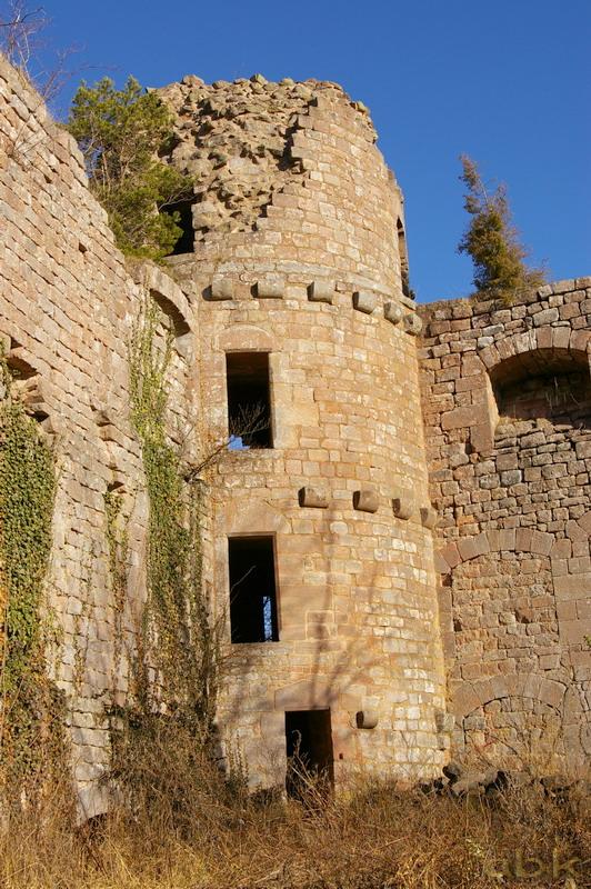 Le Château du Landsberg Imgp2827