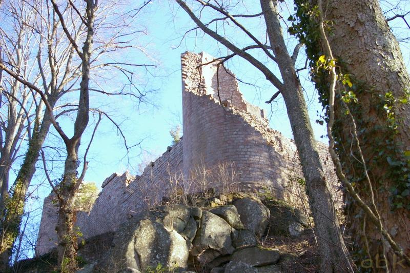 Le Château du Landsberg Imgp2830