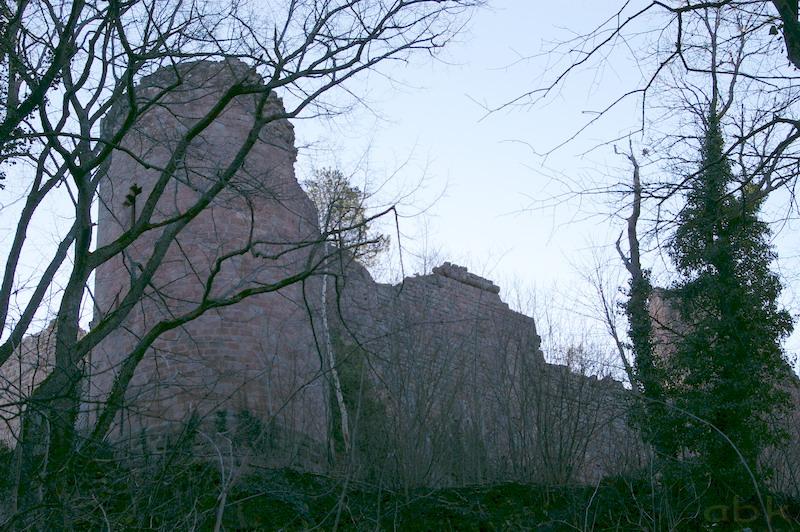 Le Château du Landsberg Imgp2831