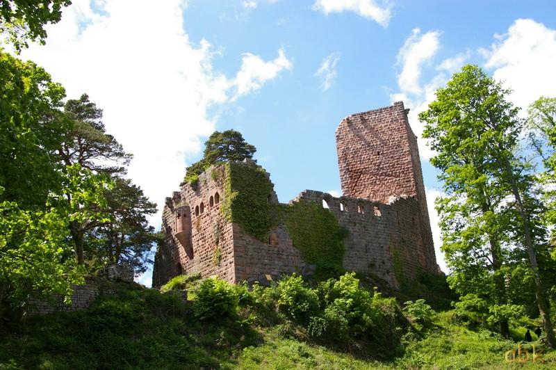Le Château du Landsberg Landsb10