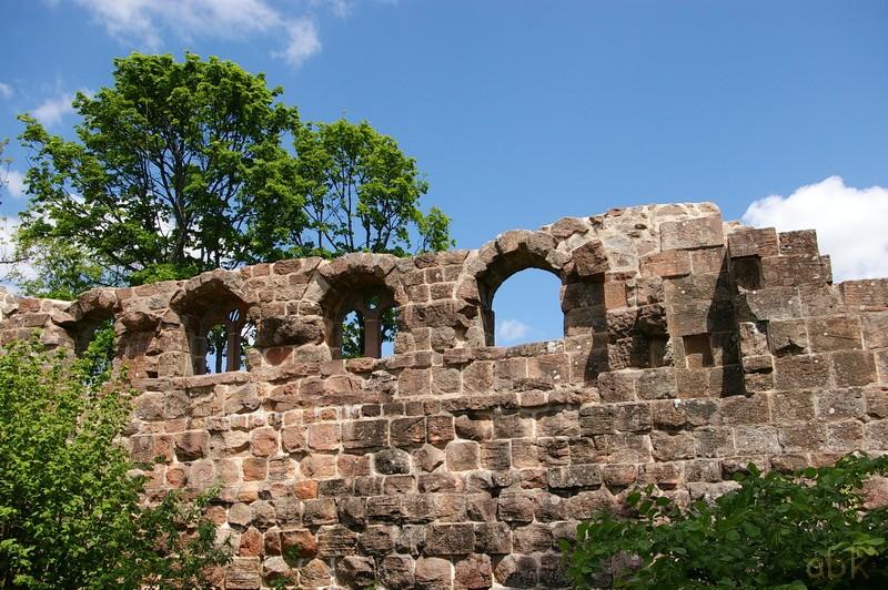 Le Château du Landsberg Landsb11