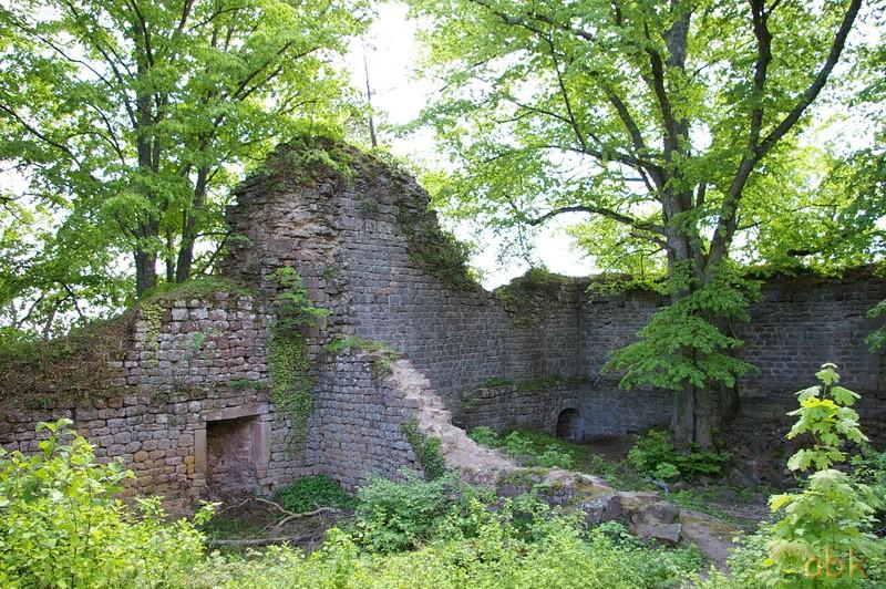 Le Château du Landsberg Landsb12