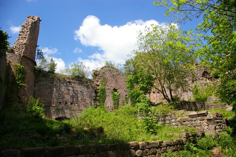 Le Château du Landsberg Landsb14