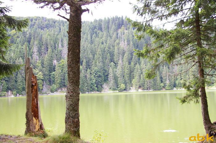 Le Tanet - Hirschteine - Lac Vert Le_tan18