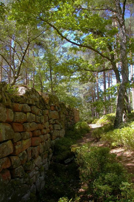 Le Mur Païen Mp510