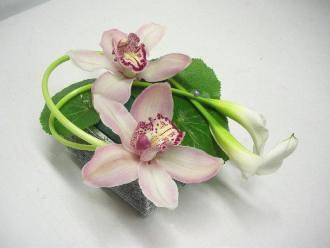 Cắm hoa lan và rum duyên dáng  12031020