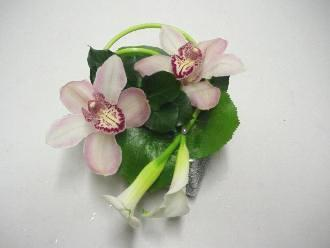 Cắm hoa lan và rum duyên dáng  12031021