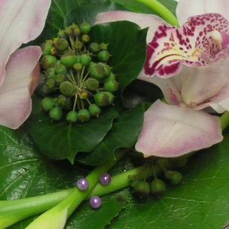 Cắm hoa lan và rum duyên dáng  12031022