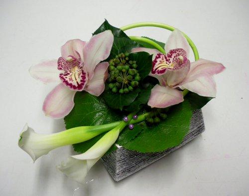 Cắm hoa lan và rum duyên dáng  12031023