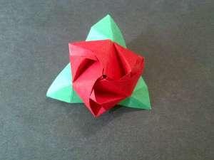 Bông hồng ma thuật 12031328