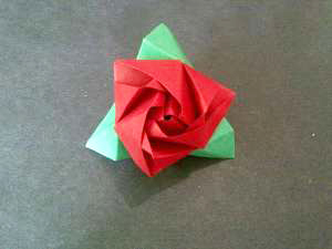 Bông hồng ma thuật 12031329