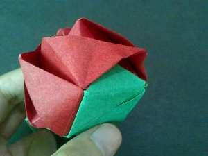 Bông hồng ma thuật 12031330