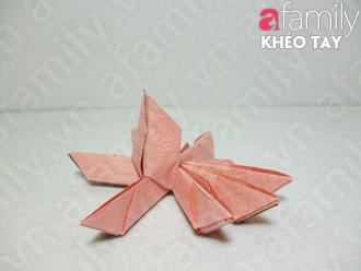 Gấp hoa sen giấy 12050531