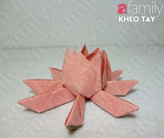 Gấp hoa sen giấy 12050532