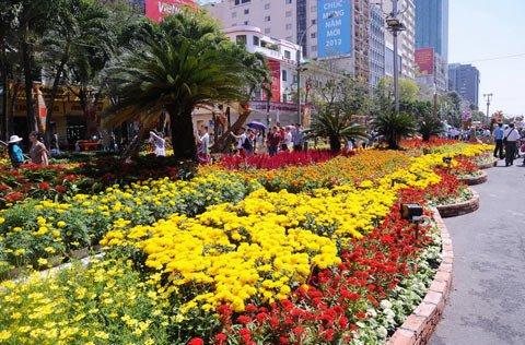 Đường hoa Nguyễn Huệ ngày Tết  20120112