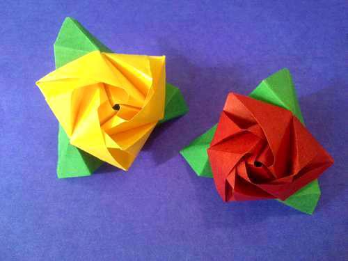 Bông hồng ma thuật 27612010