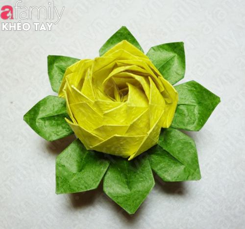 Gấp hoa sen giấy Anh-1_10