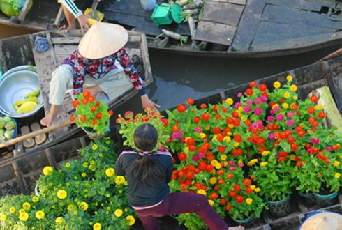 Chợ hoa nổi trên sông Cho-ho14
