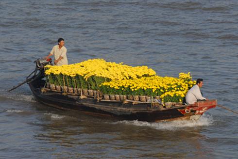Chợ hoa nổi trên sông Cho-ho19