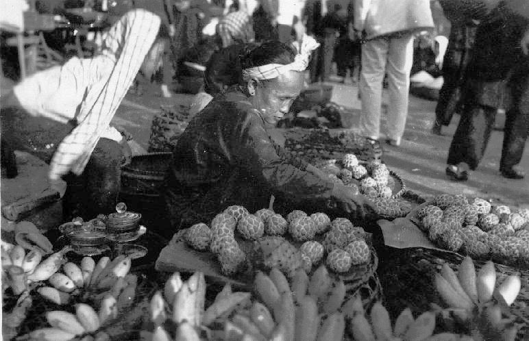 Miền Nam năm 1949 Cochin12