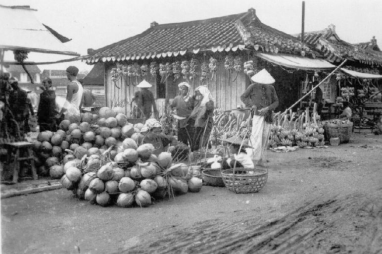 Miền Nam năm 1949 Cochin13
