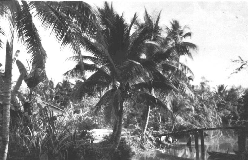 Miền Nam năm 1949 Cochin17