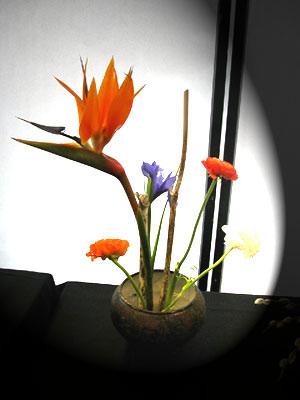 Nghệ thuật Ikebana và những điều bí ẩn Ikeban11