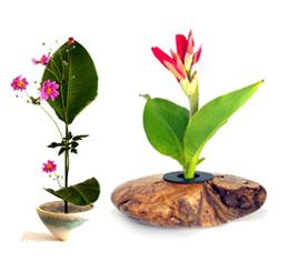 Nghệ thuật Ikebana và những điều bí ẩn Ikeban18