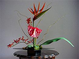 Nghệ thuật Ikebana và những điều bí ẩn Ikeban19
