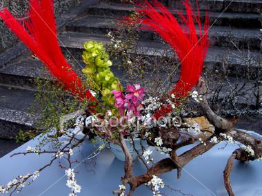 Nghệ thuật Ikebana và những điều bí ẩn Ikeban20