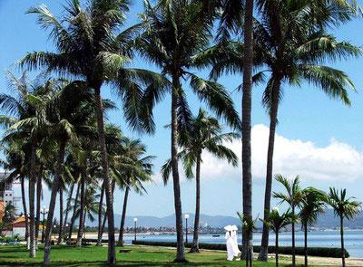 Lãng mạn phố biển Quy Nhơn Quynho10