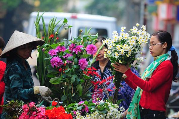 Mùa hoa cúc họa mi về trên phố Sam_6010