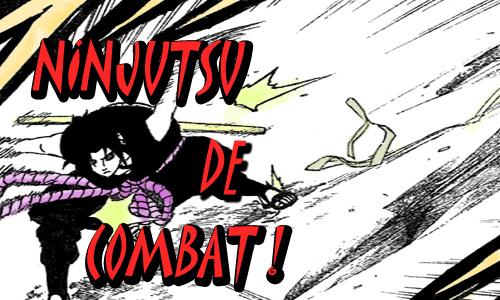 Le nouveau Ninjutsu de combat Ninjut10