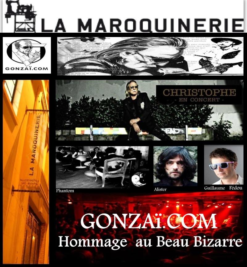 11.02.2012 Hommage au Beau bizarre – La Maroquinerie  Dobjjj11