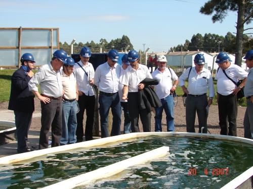 Produzir biocombustíveis a partir de microalgas Dsc07510