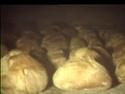 De la moisson à la boulangerie S10