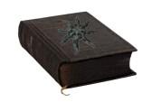 Le gardien du culte Livre_10