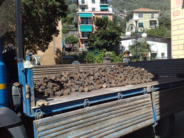 feste di luglio 1-2-3 Rapallo (Ge) 21062011